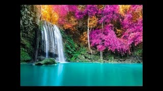 Video 🔴 Study Music 24/7: Concentration Music, Relaxing Music, Sleep Music, Meditation Music MP3, 3GP, MP4, WEBM, AVI, FLV Mei 2018