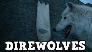 """With the Season 7 Episode 2 """"Stormborn"""" trailer we have seen the possible return of Arya Stark's Direwolf Nymeria. What does this mean? Will she help Arya? Attack her? There is so much we don't know but it is very exciting!In this video I talk about Direwolves, Nymeria's return and what I want to see from Jon Snow's Direwolf Ghost this season!Thanks for watching!Subscribe to for more Game of Thrones! - https://www.youtube.com/user/Fentony118?sub_confirmation=1Twitter - https://twitter.com/Fentony118Intro & Outro Music: www.bensound.com"""