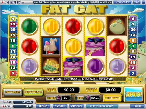 Fat Cat video slot at Online Vegas