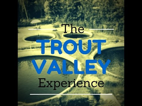 Fishing and Dining Experience in Nyeri at the Trout Valley