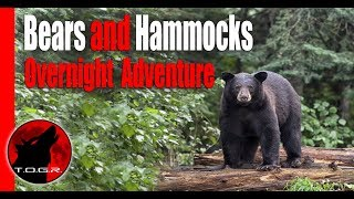 Bears and Hammocks - End of Summer Backpacking Adventure