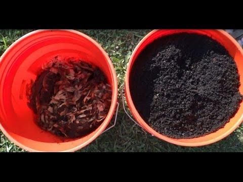 Harvesting Worm Casting – Worm Composting Update