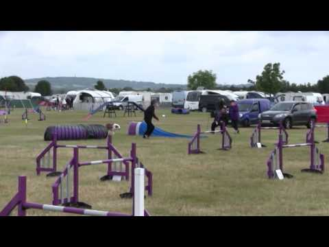 Axstane 21-06-2015 G5 Jumping - 7th place (Oz was 1/2 second slower)