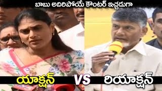 Video War Words Between CBN vs YS Sharmila | CM Chandrababu Naidu Counter to YS Sharmila Comments MP3, 3GP, MP4, WEBM, AVI, FLV Januari 2019