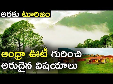 Araku Valley Tourism | Andhra Ooty Tourist Spots and it's Significance   AP Tourism | Indain Waves