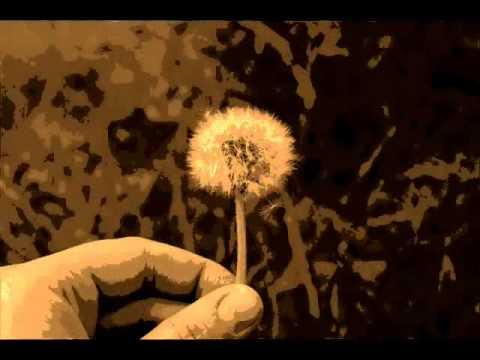 Tekst piosenki Nina Simone - Young Knight po polsku