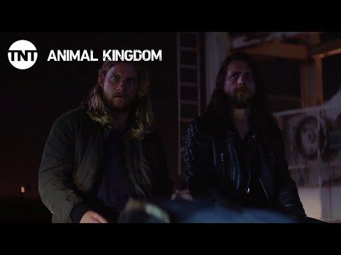 Animal Kingdom: We're Never Doing This Again - Season 2, Ep. 11 [CLIP] | TNT