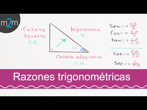 Trigonometrische Funktionen und Winkelfunktionen