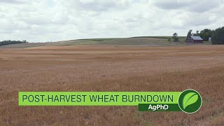 Brian and Darren Hefty give you pointers on achieving a successful burndown after your wheat harvest.