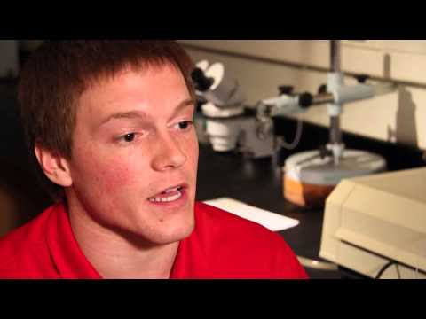 Josh Rogers is a medical biology major. Join Josh in the lab as he discusses his unique undergraduate research opportunities in neuro behavior. Video: Courtesy USD/edu