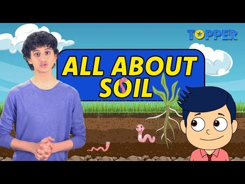 What is Soil?| Layers of Soil |Formation of Soil | Types and Uses of Soil |Class 1 to 5|