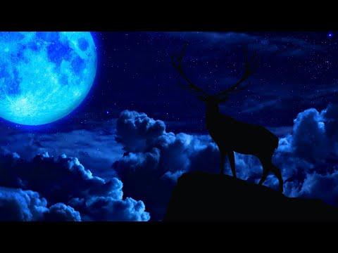 Heavenly Sleep Music You Can L …