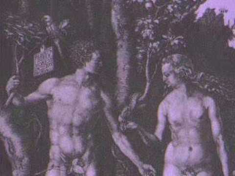 Considerations morality kantian and sexual