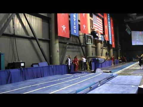 Steven Legendre - Vault - 2011 Winter Cup Challenge Finals