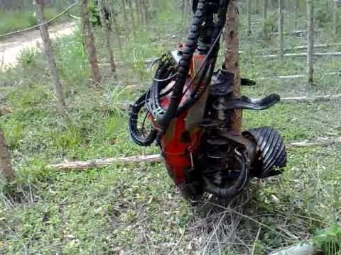 Colheita Florestal Mecanizada 1 - Rafael Ferreira