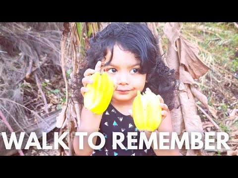 162.A walk to remember| Exploring island👌