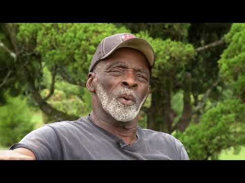 Carolina Impact: Pearl Fryar's Topiary Garden (Feb. 6, 2018)
