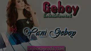 Geboy entertainment