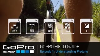 Video GoPro Field Guide: Understanding Protune (Ep 1 of 3) MP3, 3GP, MP4, WEBM, AVI, FLV September 2018