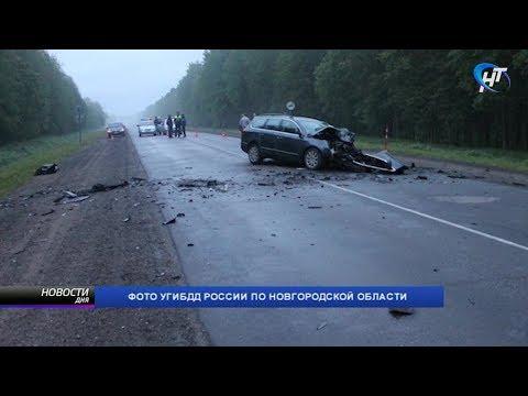 В Новгородской области ночью в ДТП погибли 3 человека