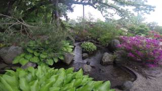Rockford (IL) United States  city images : Anderson Japanese Gardens Rockford Illinois United States May 2014 ( 3 )