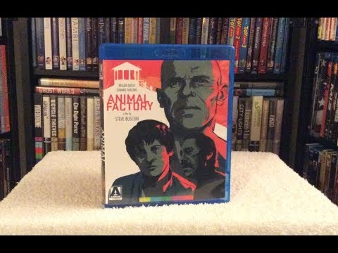 Animal Factory BLU RAY UNBOXING + Review - Arrow Video