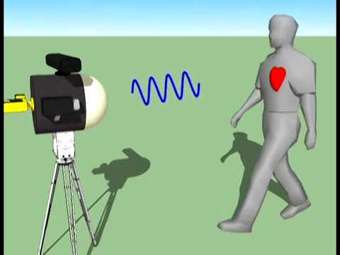 Millimeter-Wave Remote Biometric Identification and Tracking (RBIT) System for Security Applications