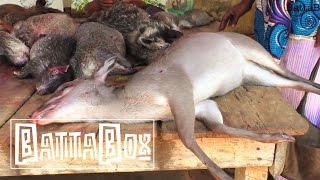 Subscribe to BattaBox on YouTube: http://goo.gl/4dgy2r On BattaBox you have seen Odunayo eaten Dog meat, grass cutter meat, ...