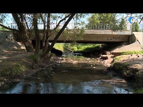 Специалисты отреагировали на жалобы жителей Григорово и Панковки о загрязнении реки Веряжи