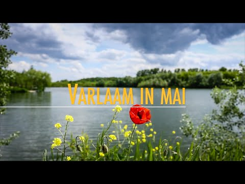 Varlaam in mai
