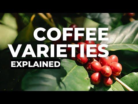 What are coffee varieties? -