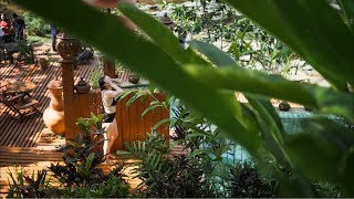 The AMAZING hotel built on a waterfall - Chiang Mai, Thailand