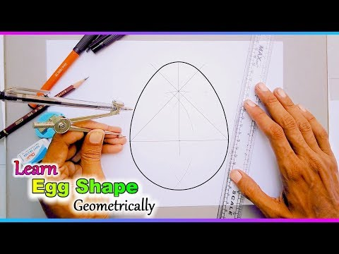 how to draw an egg shape with geometry
