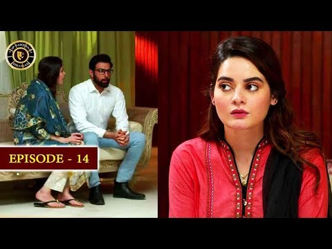 Hassad Episode 14 |  Minal Khan | Top Pakistani Drama