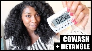 The 25 Minute Co Wash + Detangle! Thick Long Natural Hair - Naptural85 - YouTube