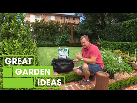 Pot Plant Display Ideas | Gardening | Great Home Ideas