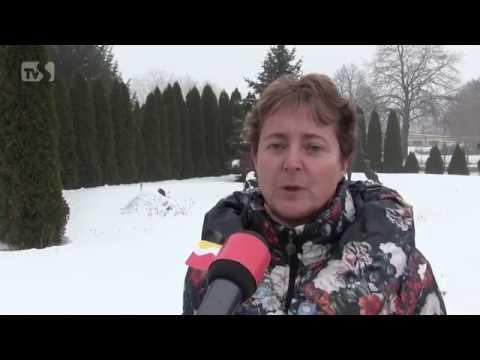 TVS: Veselí nad Moravou 7. 2. 2017