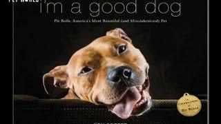 """Steve Dale: """"I'm a Good Dog"""""""