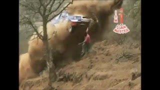 Video Extreme Rally Crash Compilation (With Pure Engine Sound) MP3, 3GP, MP4, WEBM, AVI, FLV Agustus 2019