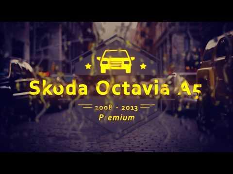 """Чехлы на Skoda Octavia A5 (ambition), серии """"Premium"""" - серая строчка"""
