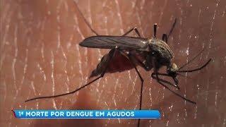 Agudos registra a primeira morte suspeita de dengue em 2019