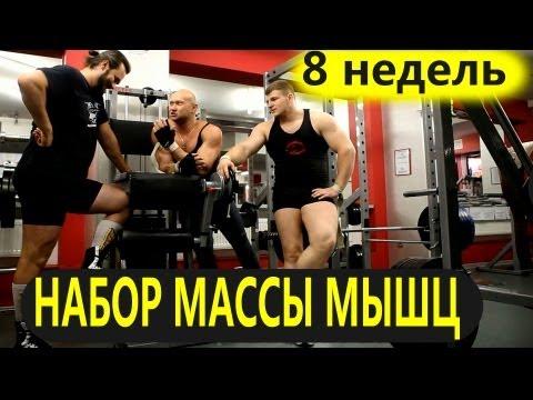 Упражнения для набирания мышечной массы в домашних условиях