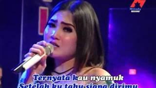 Nella Kharisma - Sutradara Cinta  (Official Music Video)