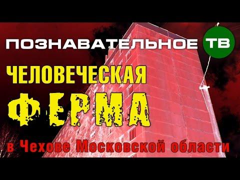 Заметки: Человеческая ферма в Чехове (Познавательное ТВ Артём Войтенков)