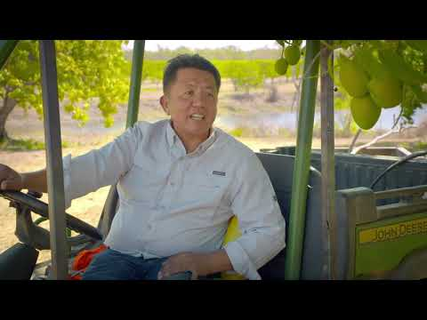 2019 Finalist Wayne Quach of Pine Creek Mango Plantation winner in the Small Business Category