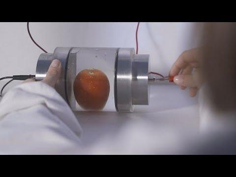 Elektroporation: Hochspannung holt mehr aus Obst und Ge ...