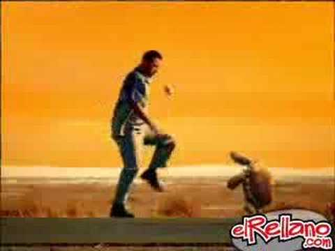 Tortoise & Beer Ad : part 2