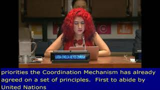 Emilia Reyes's Open Remarks at the HLPF 2017: UN Web TV - http://webtv.un.org