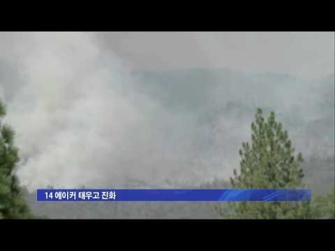타운 인근 할리우드 산 산불 7.19.16 KBS America News