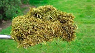 Video You Will Never Throw Away Grass Clippings After Watching This MP3, 3GP, MP4, WEBM, AVI, FLV September 2018
